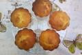 Bolos (o quasi) - dolcetti brasiliani