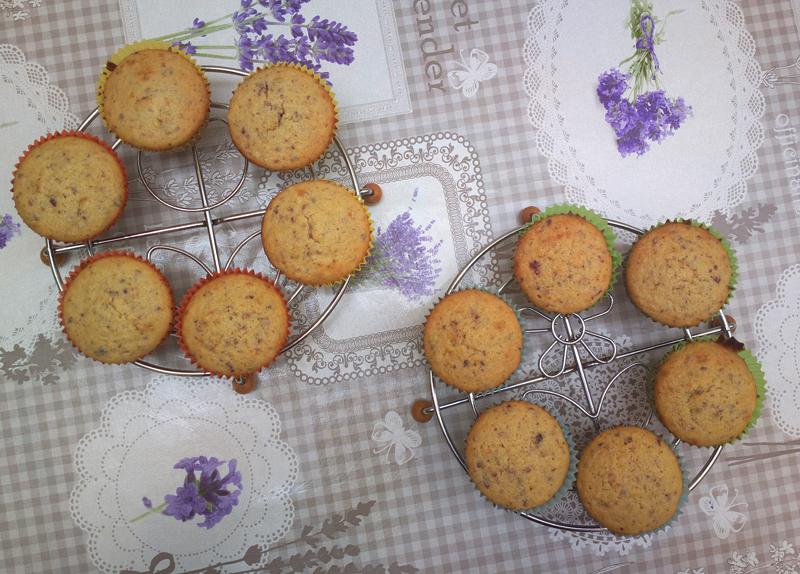 Muffin alla frutta frullata - cranberries e albicocche