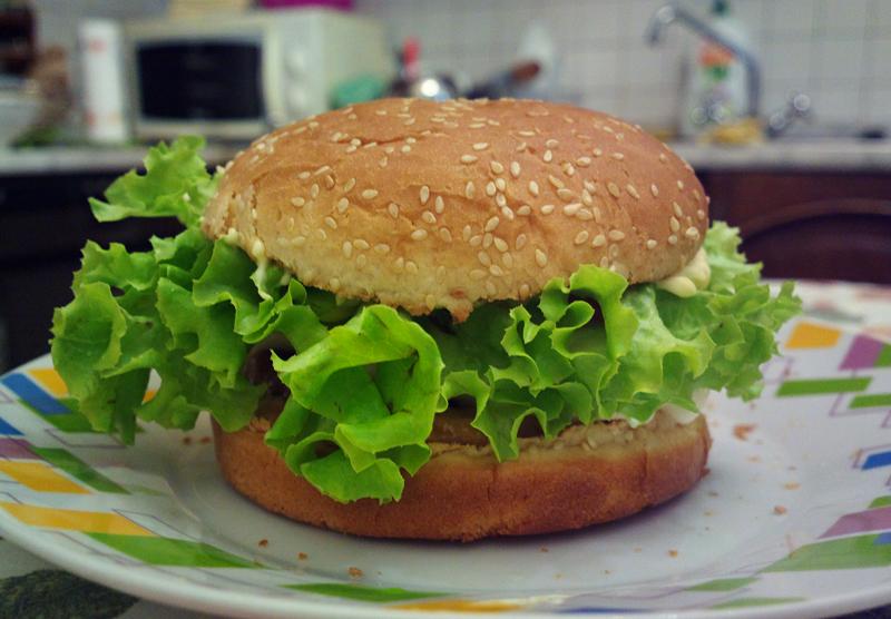Fastfood? no grazie! l'hamburger me lo preparo io!