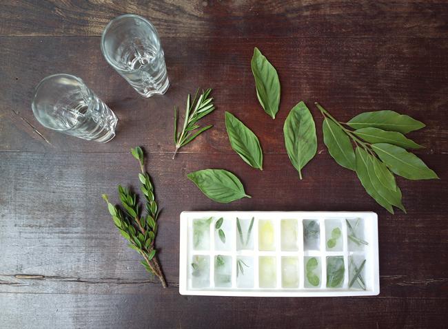 Cubetti di ghiaccio alle erbe aromatiche