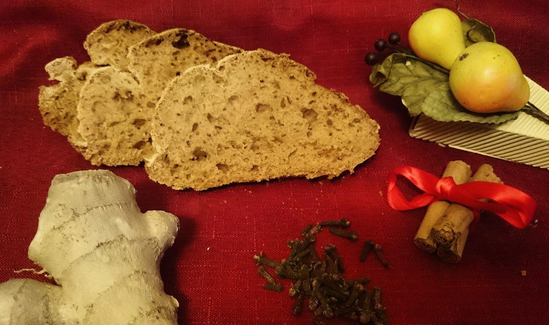 Panspeziato o pain d'epices senza glutine
