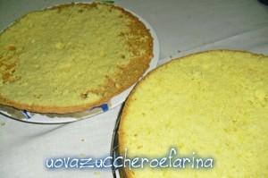 torta mimosa (interno 01)