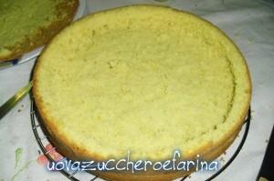torta mimosa (interno 02)