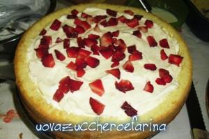 torta mimosa (interno 03)