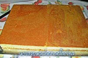 torta libro 01