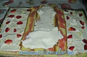 torta libro 03