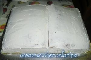 torta libro 05