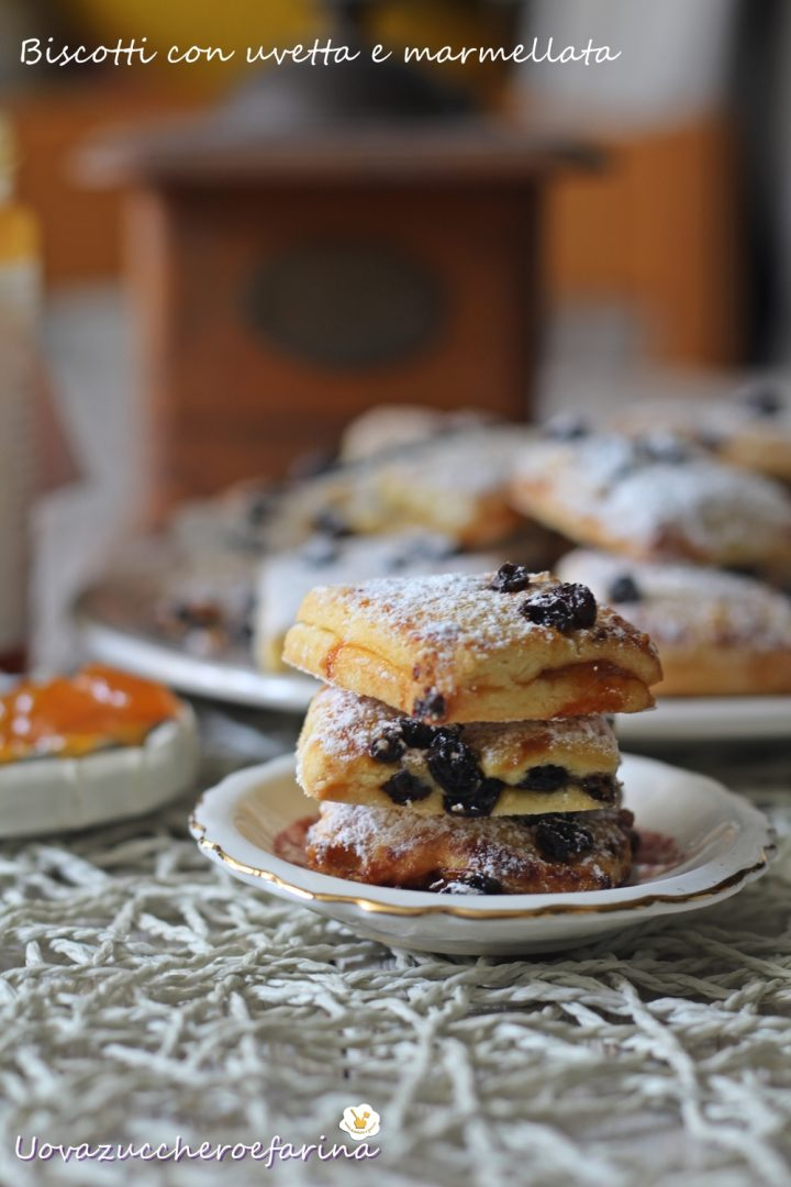 biscotti uvetta marmellata albicocche