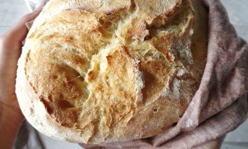 Pane di Altamura con licoli