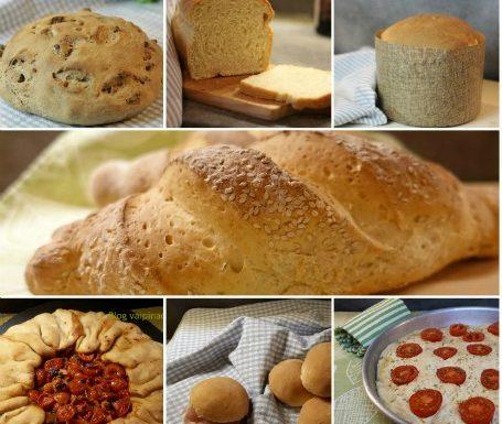 Raccolta di lievitati e pizze