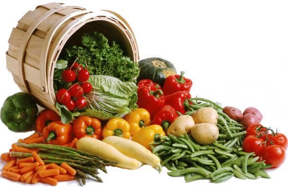 Ricette con prodotti di stagione