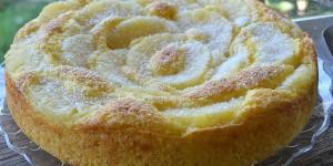 Torta allo yogurt con cocco e ananas