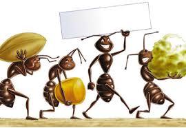 Caronte non solo caldo verdesalvia - Come allontanare le formiche da casa ...