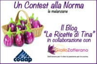 Contest_Norma_Logo11
