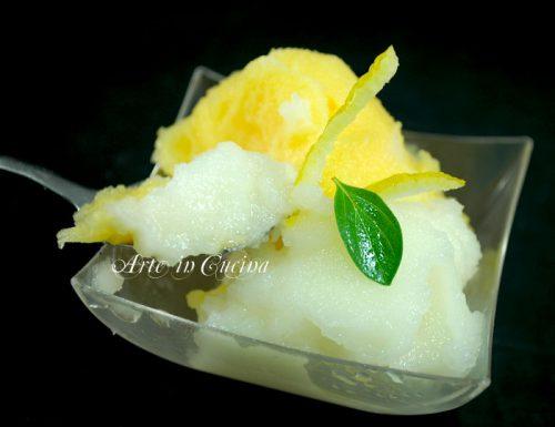 Gelato al limone e arancia senza gelatiera