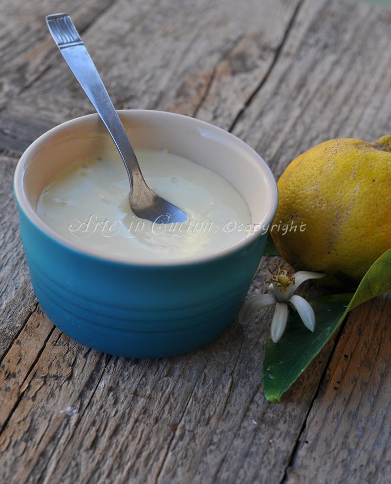 Margarina senza leticina di soia fatta in casa ricetta vickyart arte in cucina