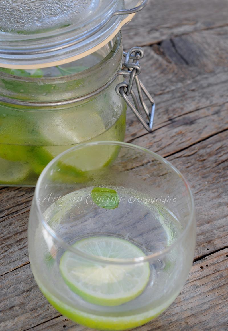 acqua-detox-depurativa-disintossicante-rinfrescante-2