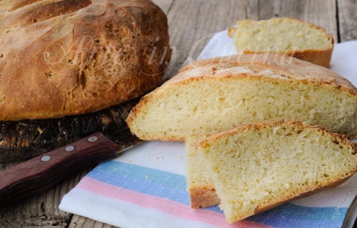 Pane di saragolla ricetta antica napoletana