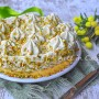 Semifreddo al pistacchio dolce facile e veloce