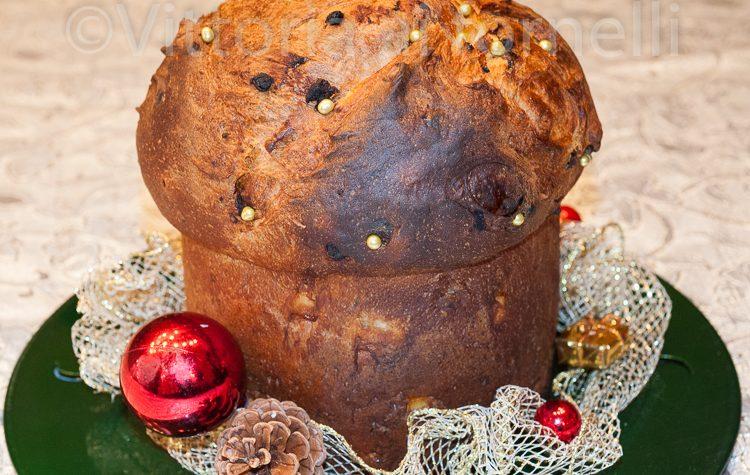 Panettone artigianale, ricetta natalizia