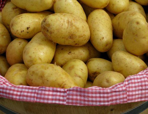 Ricette con patate, raccolta speciale