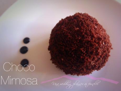 choco_mimosa7