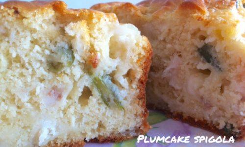 Plumcake spigola e fagiolini