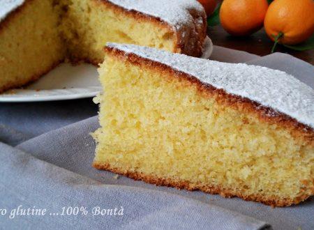 Torta morbida e leggera all'arancia