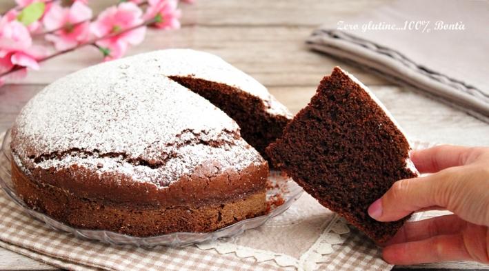 Torta 5 Minuti al Cacao Senza Glutine