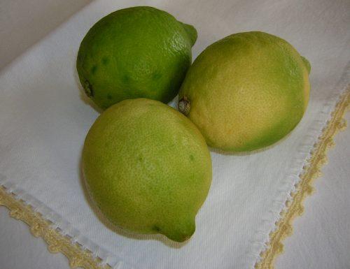 Scorza del limone