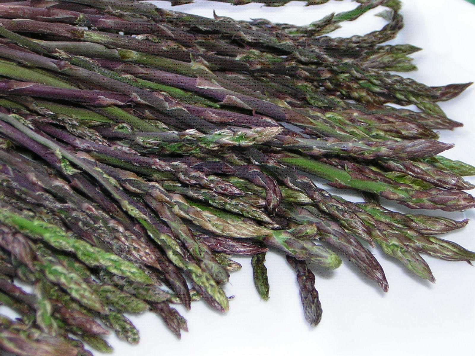 gli asparagi selvatici