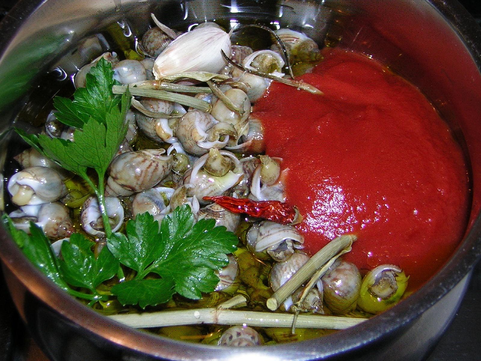 preparazione delle lumachine di mare ricetta marchigiana