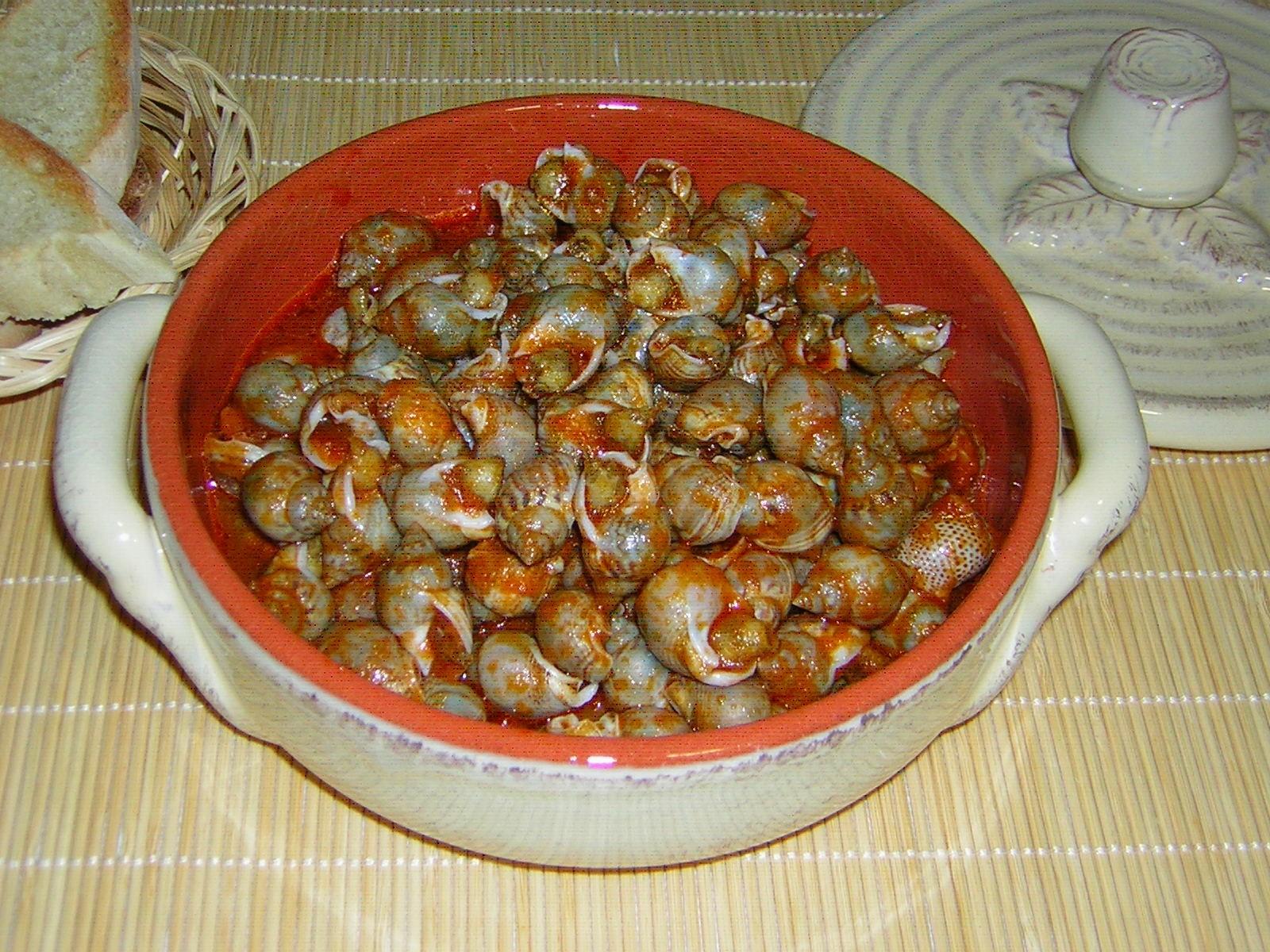 lumachine di mare ricetta marchigiana