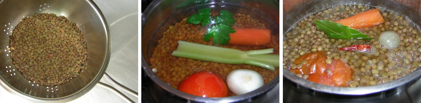 Come cucinare le lenticchie in cucina con zia lora for Lenticchie d acqua