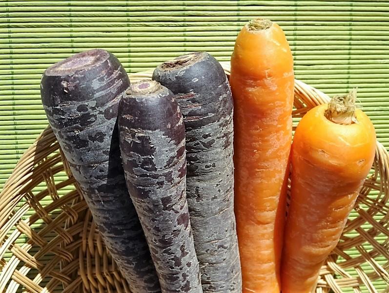carote utilizzate nel risotto con carote viola e salsiccia