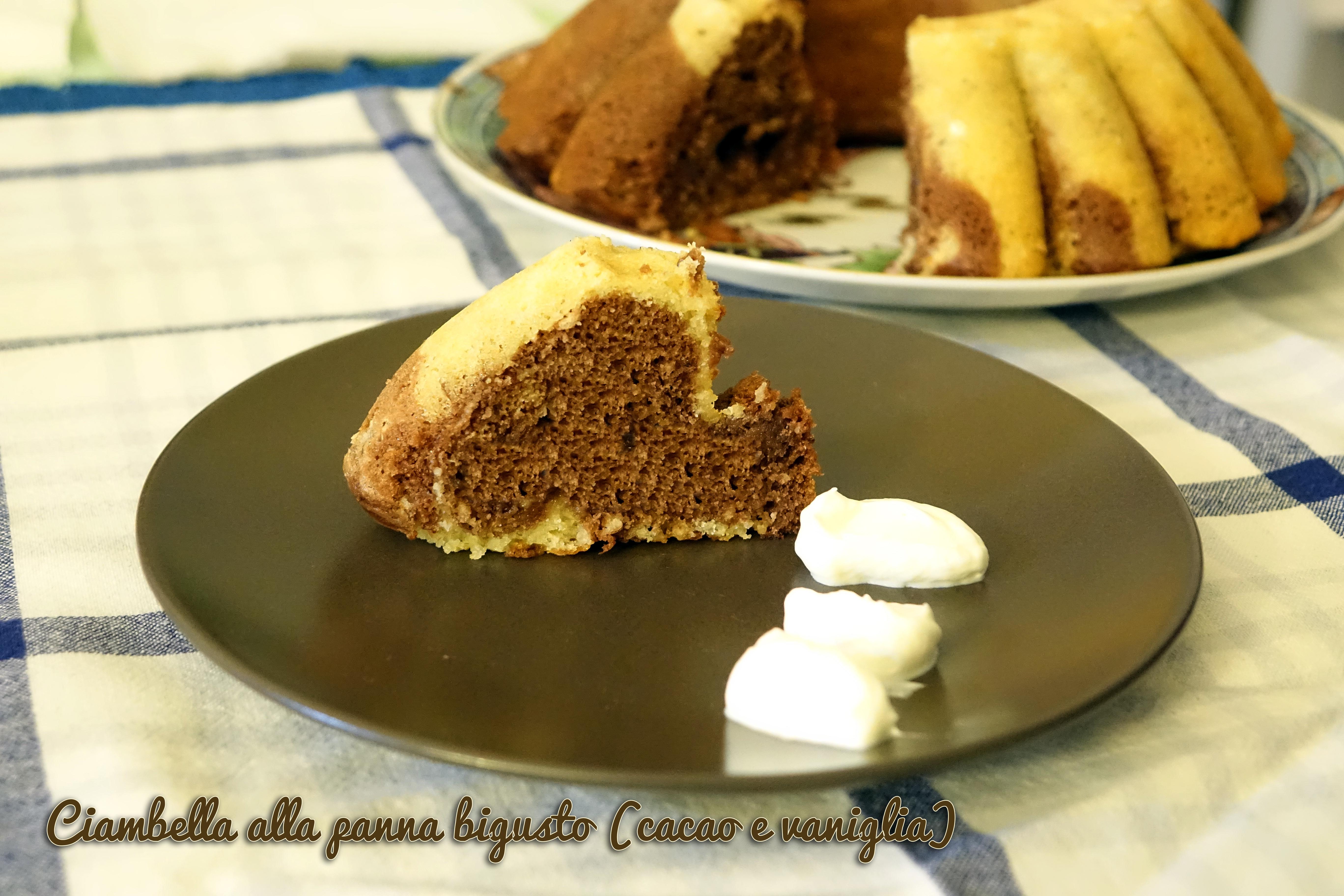 Ciambella alla panna bigusto (cacao e vaniglia)