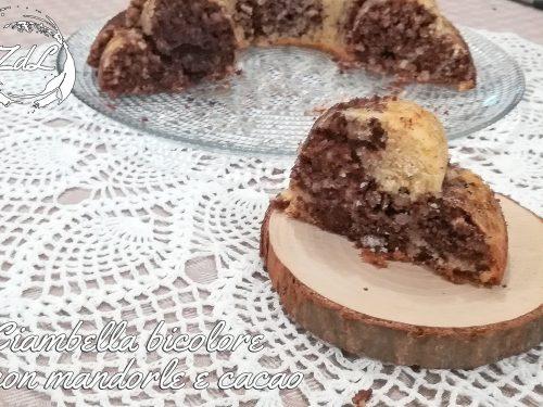 Ciambella bicolore con mandorle e cacao